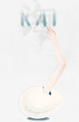 Book of the month: KAI