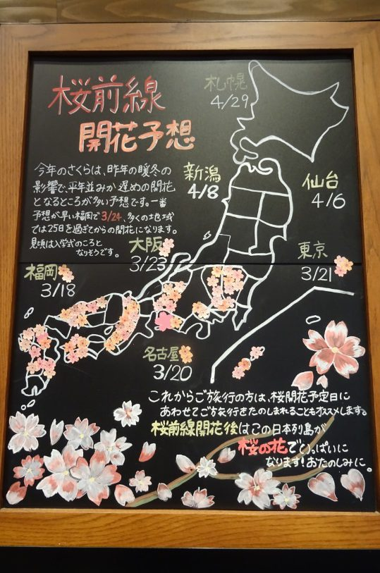 Cherry blossom forecast board in Ohori Park's Starbucks!