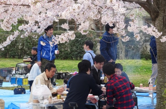A typical site during cherry blossom season!