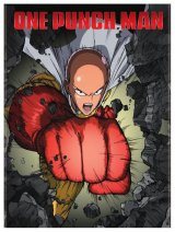 Punching my way through 'One Punch Man'